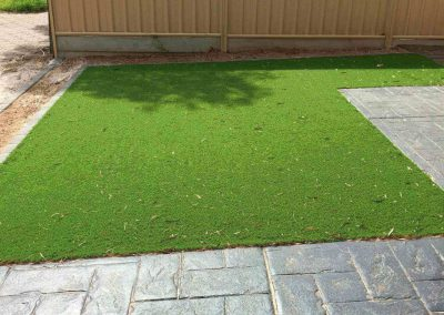 This Prospect client opted for a low maintenance natural lawn for their home